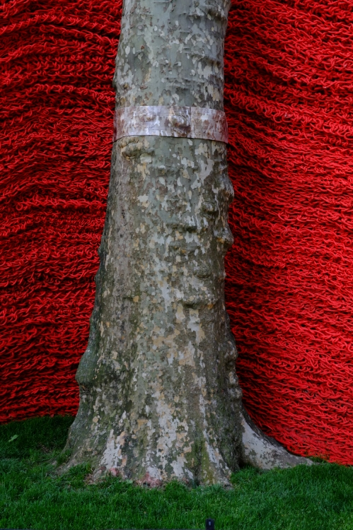Detail with tree of Orly Genger's Red, Blue and Yellow installation in Madison Sq. Park, NYC. 32 mm lens