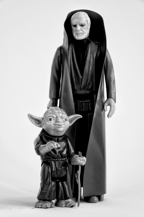 Two Jedi Masters. Judge me not by my size do you.
