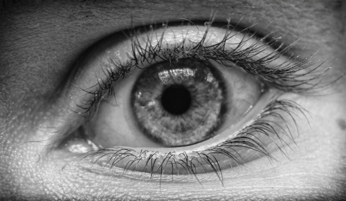 I honestly don't know who's eye this is. I found a folder nested deeply among other folders with about 10 different eyes. I barely recall shooting this.