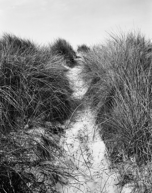 View through the dunes of Utah Beach