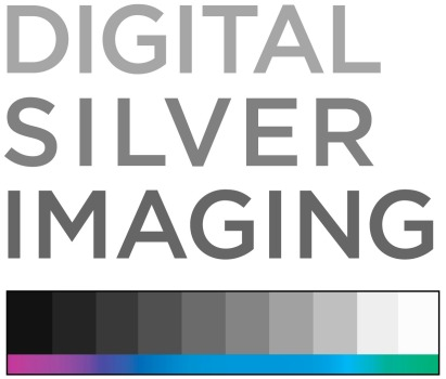 _DSI-logo-stacked-color-RGB